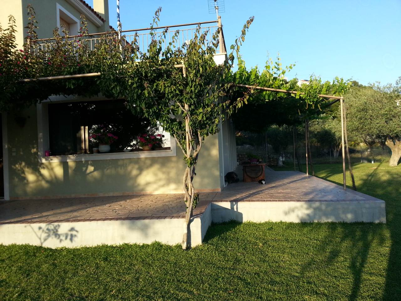 anio residence garden